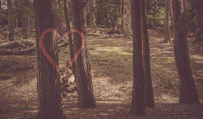 desabafo de problemas amorosos e de coração